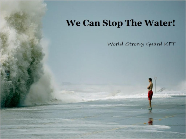 World Strong Guard